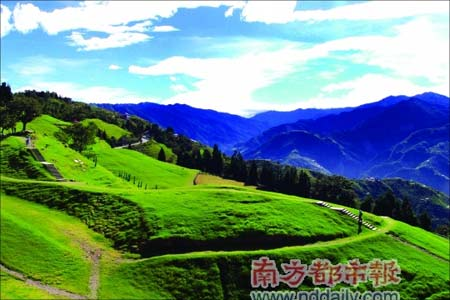 福寿山农场 43种苹果结在一棵树上 既然是农场游,怎么少得了花果?